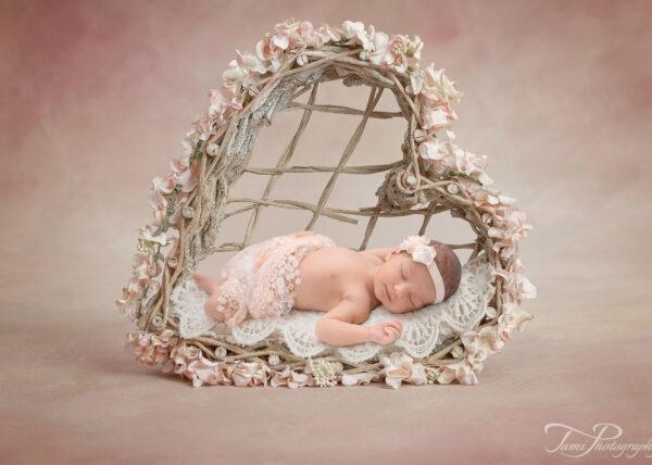 Backdrop Heart bed basket Web