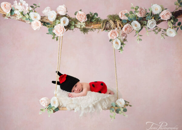 Backdrop Swing rose Web